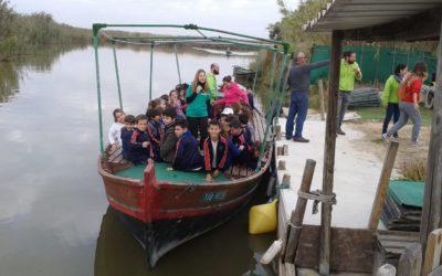 Un paseo en barca por la Albufera